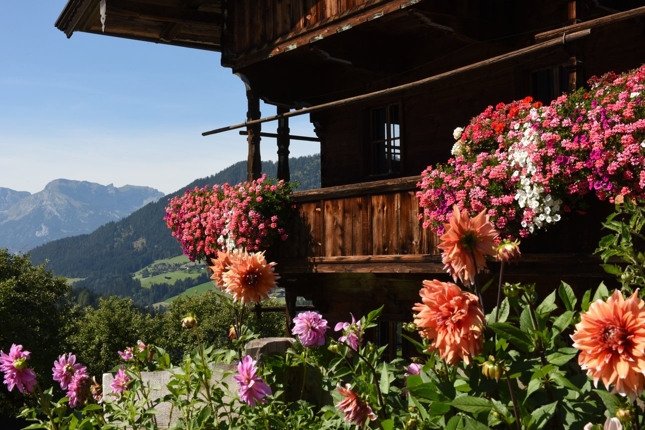 Farm with flower balcony