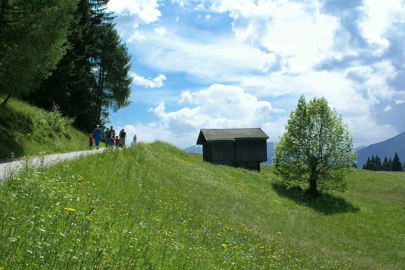 Panoramic trail in Reith im Alpbachtal