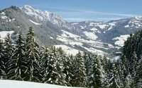 Winterview from Reitherkogel - Reith im Alpbachtal