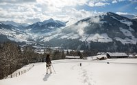 Snowshoe tour in Alpbach