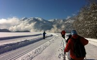 Cosy snowshoe hike in Alpbachtal